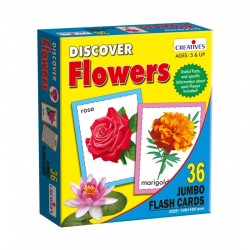 Discover Flowers - Jumbo Flash cards Creatives