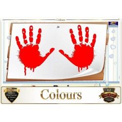 Flash Card Colours - Pack...