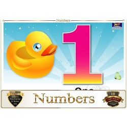 Flash Card Numbers - Pack...