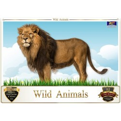 Flash Card Wild Animals -...
